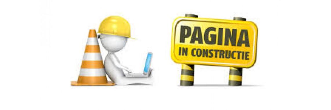 Pagina în constructie